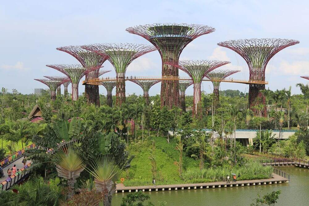 Singapore: A Launchpad for Clean Technology